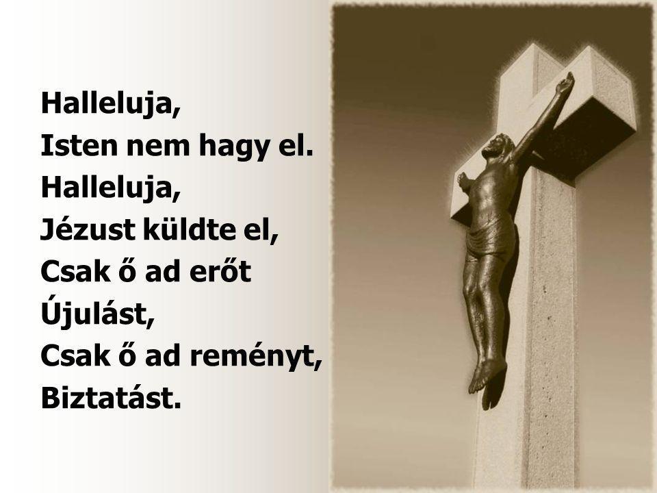 Halleluja, Isten nem hagy el. Halleluja, Jézust küldte el, Csak ő ad erőt Újulást, Csak ő ad reményt, Biztatást.