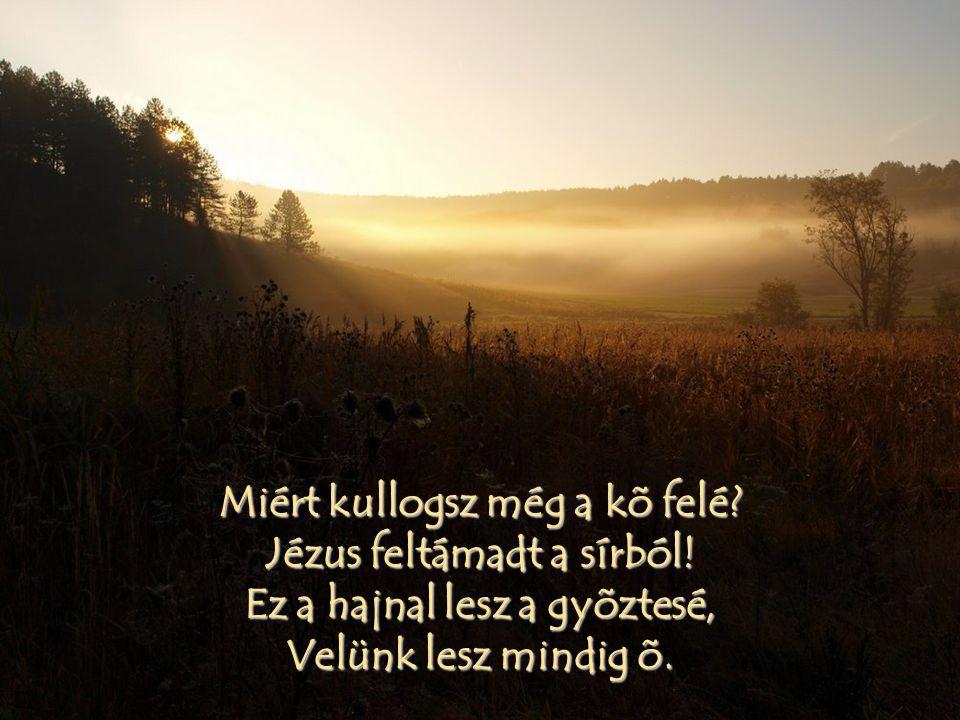 Miért kullogsz még a kõ felé? Jézus feltámadt a sírból! Ez a hajnal lesz a gyõztesé, Velünk lesz mindig õ.