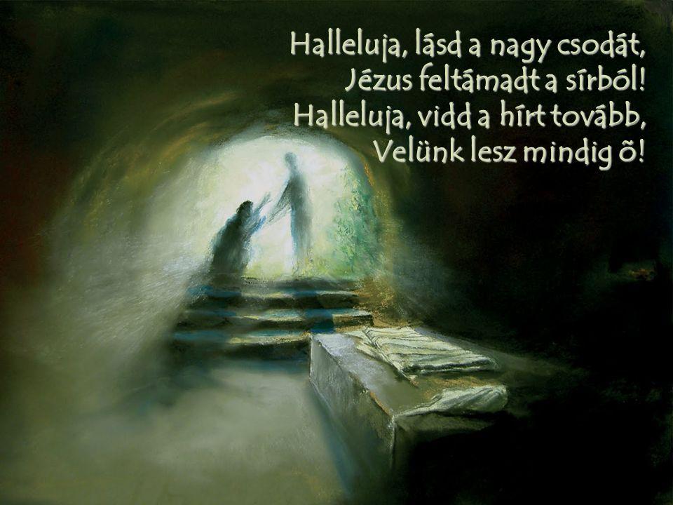 Halleluja, lásd a nagy csodát, Jézus feltámadt a sírból! Halleluja, vidd a hírt tovább, Velünk lesz mindig õ!