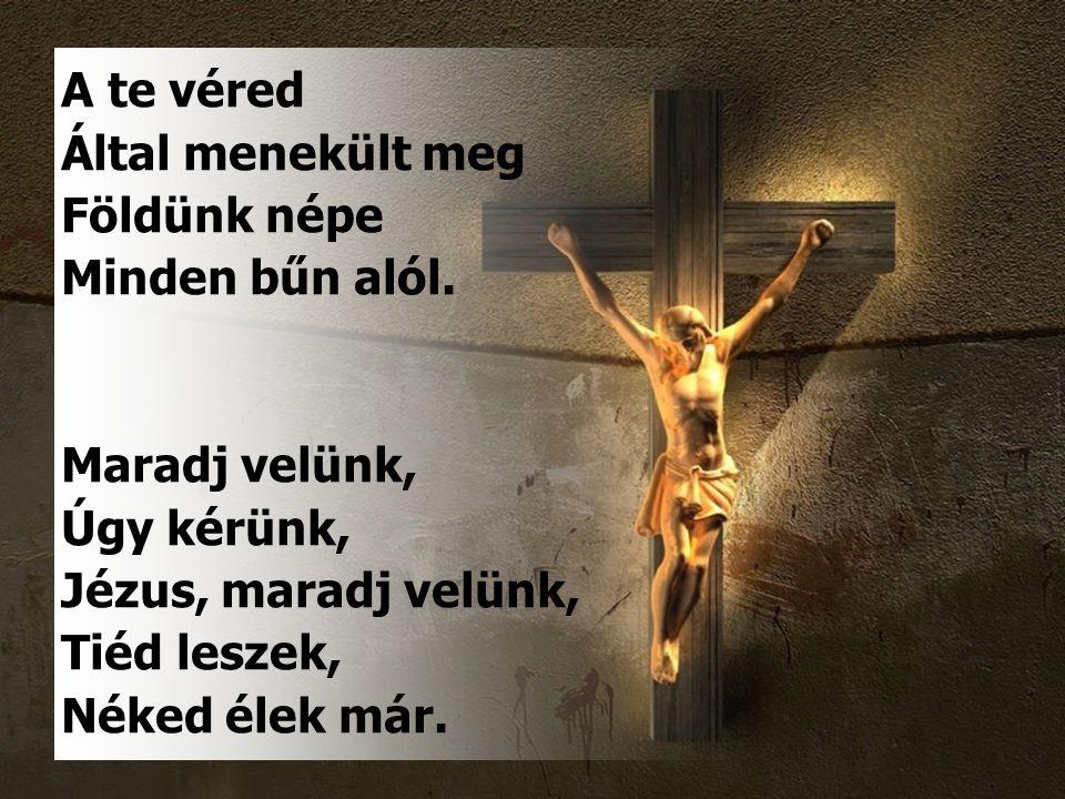 A te véred Által menekült meg Földünk népe Minden bűn alól.
