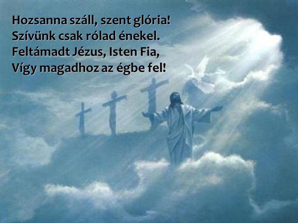 Hozsanna száll, szent glória! Szívünk csak rólad énekel. Feltámadt Jézus, Isten Fia, Vígy magadhoz az égbe fel!