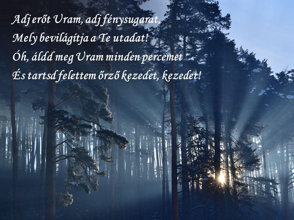 Adj erőt Uram, adj fénysugarat, Mely bevilágítja a Te utadat.