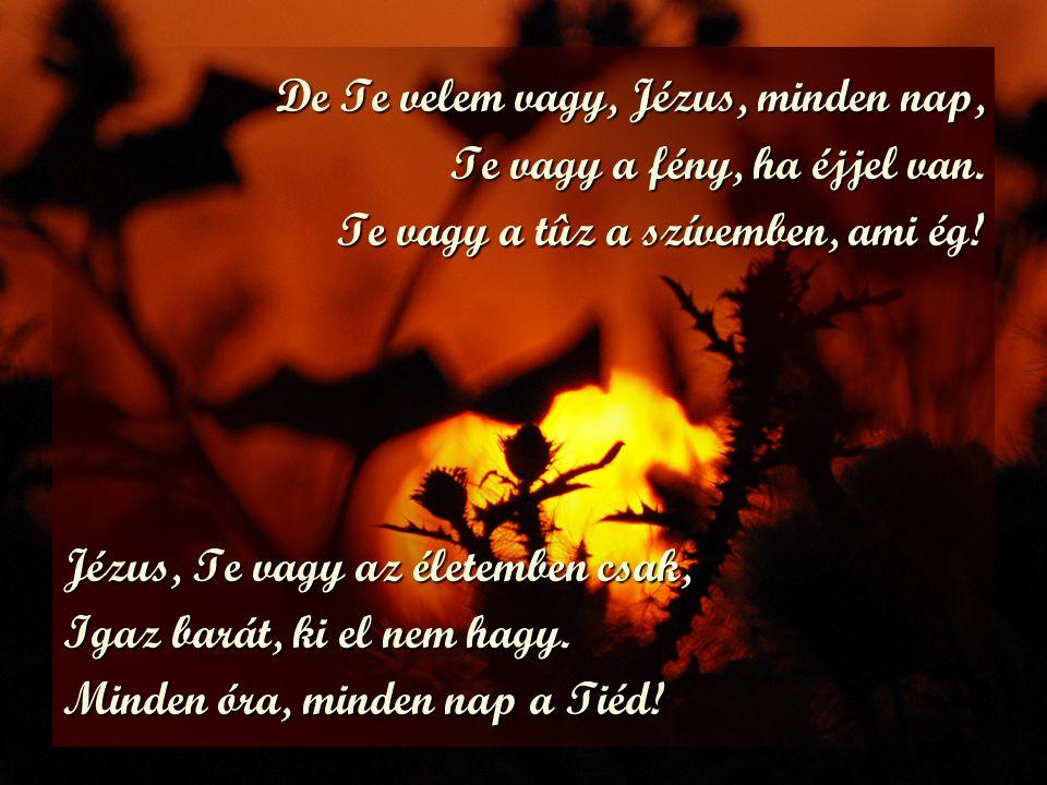 De Te velem vagy, Jézus, minden nap, Te vagy a fény, ha éjjel van. Te vagy a tûz a szívemben, ami ég! Jézus, Te vagy az életemben csak, Igaz barát, ki