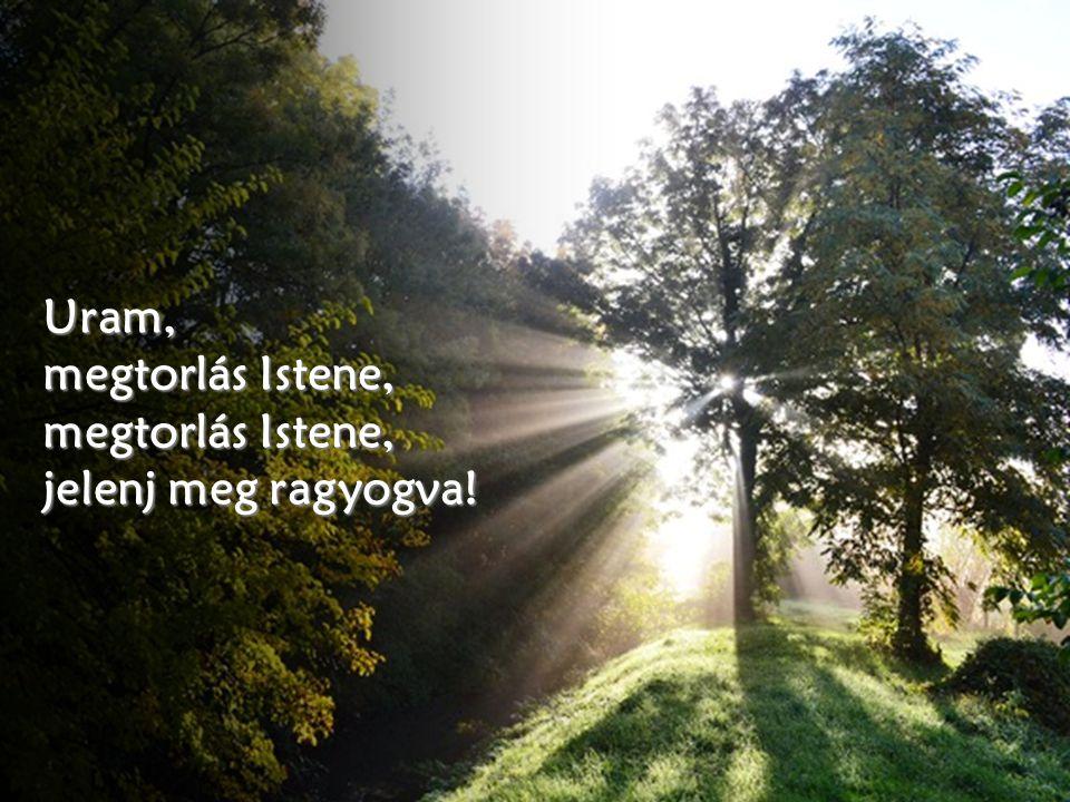 Boldog az az ember, akit te megfenyítesz, Uram, és megtanítasz törvényedre, hogy megóvd a rossz napoktól, míg a bõnösöknek megássák a sírját.