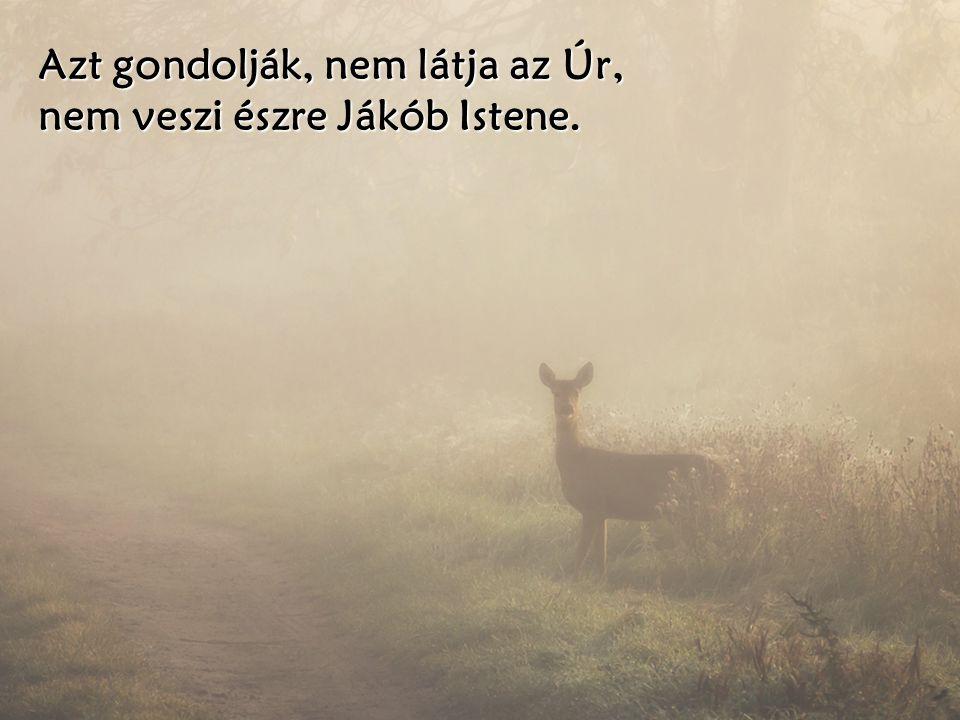 Azt gondolják, nem látja az Úr, nem veszi észre Jákób Istene.