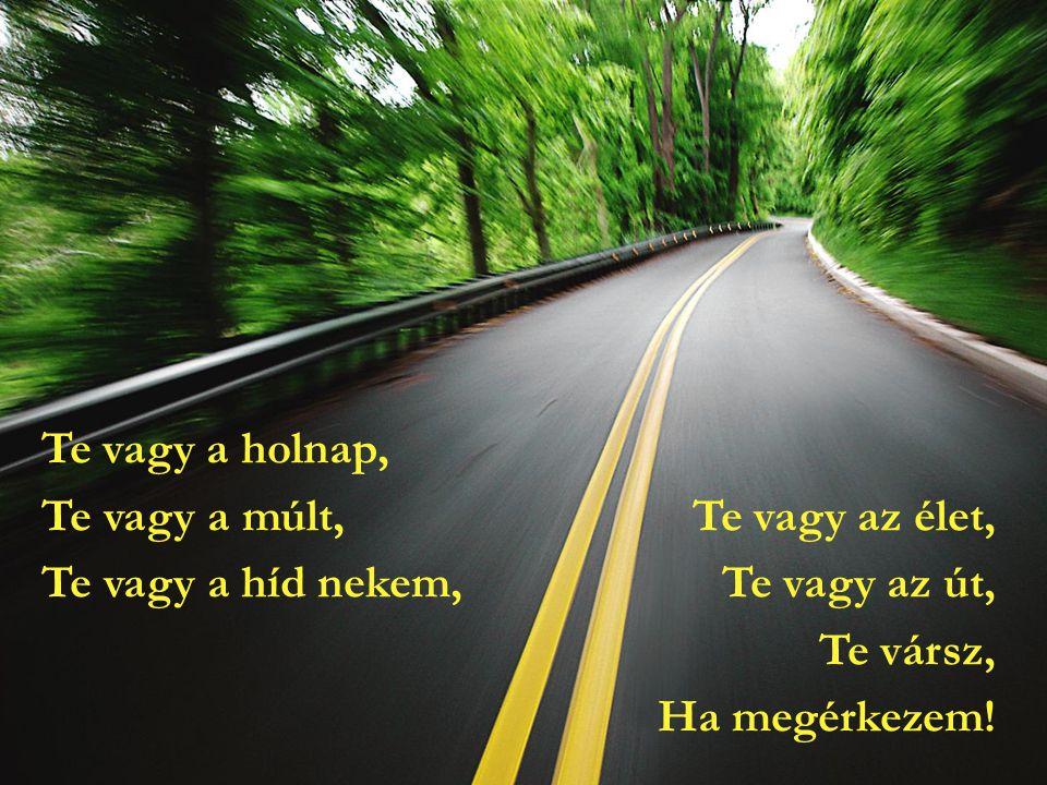 Te vagy a holnap, Te vagy a múlt, Te vagy az élet, Te vagy a híd nekem, Te vagy az út, Te vársz, Ha megérkezem!