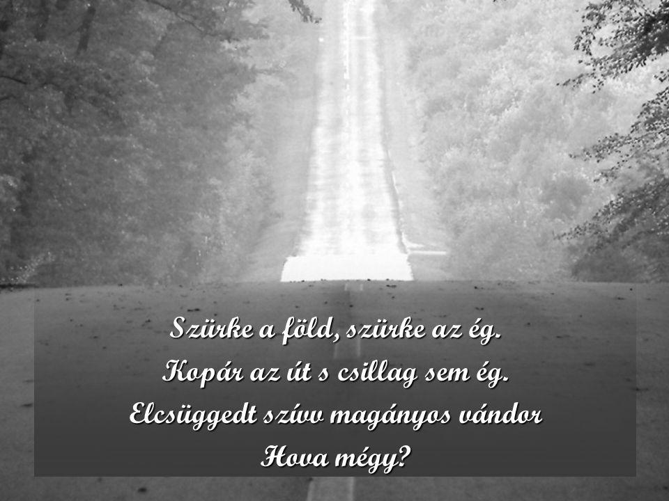 Szürke a föld, szürke az ég. Kopár az út s csillag sem ég. Elcsüggedt szívv magányos vándor Hova mégy?