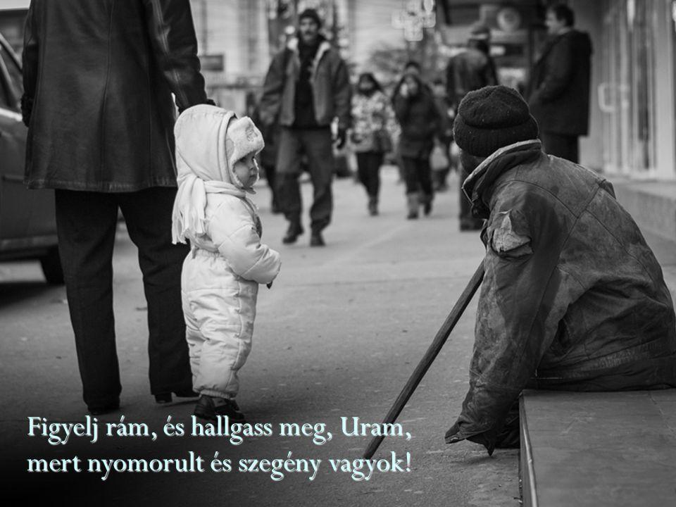 Figyelj rám, és hallgass meg, Uram, mert nyomorult és szegény vagyok!