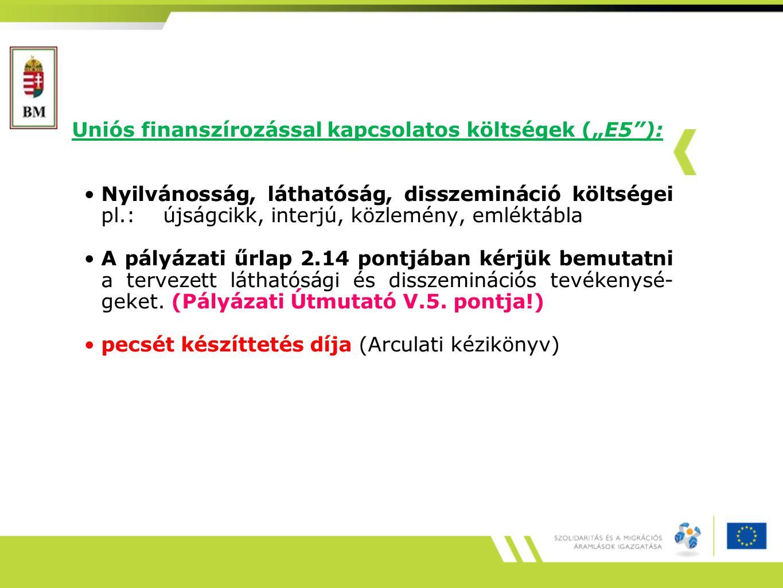 """Uniós finanszírozással kapcsolatos költségek (""""E5""""): Nyilvánosság, láthatóság, disszemináció költségei pl.: újságcikk, interjú, közlemény, emléktábla"""