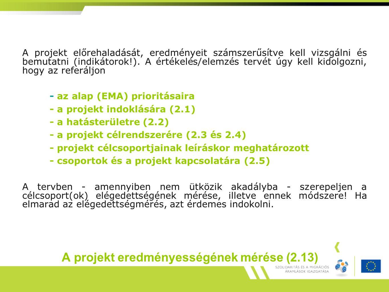 A projekt eredményességének mérése (2.13) A projekt előrehaladását, eredményeit számszerűsítve kell vizsgálni és bemutatni (indikátorok!).