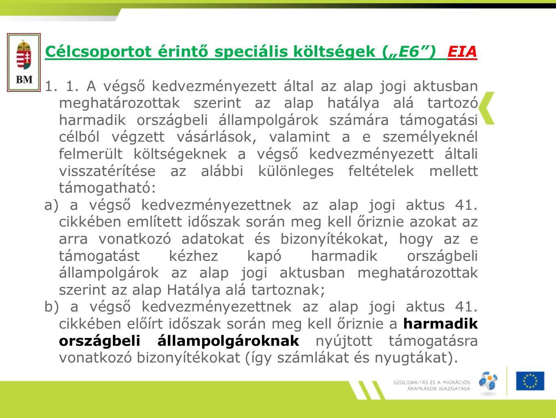 """Célcsoportot érintő speciális költségek (""""E6 ) EIA 1."""