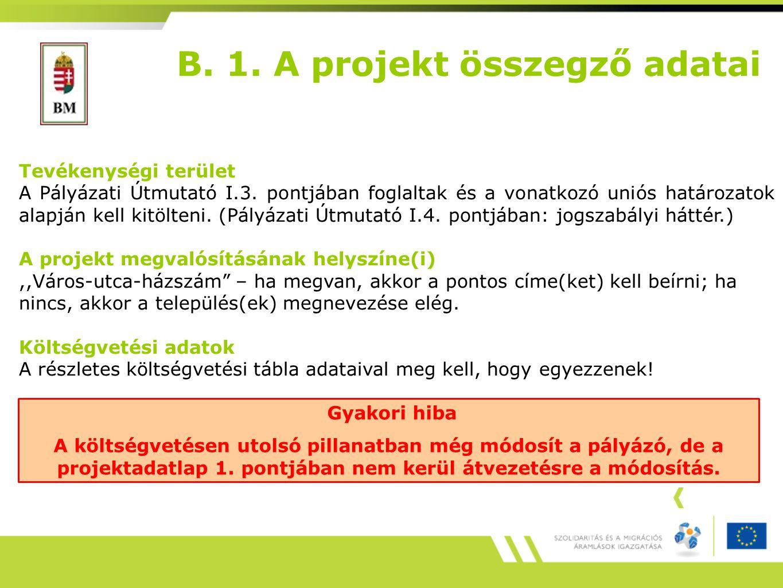 B. 1. A projekt összegző adatai Tevékenységi terület A Pályázati Útmutató I.3.