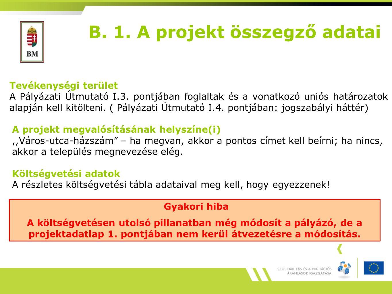 B.1. A projekt összegző adatai Tevékenységi terület A Pályázati Útmutató I.3.