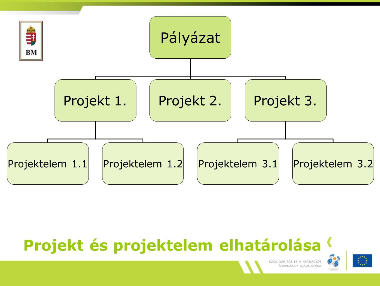 Projekt és projektelem elhatárolása Pályázat Projekt 1.Projekt 2.Projekt 3.