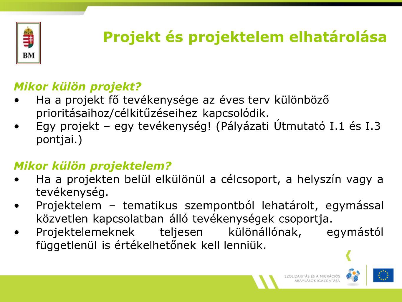 Projekt és projektelem elhatárolása Mikor külön projekt.
