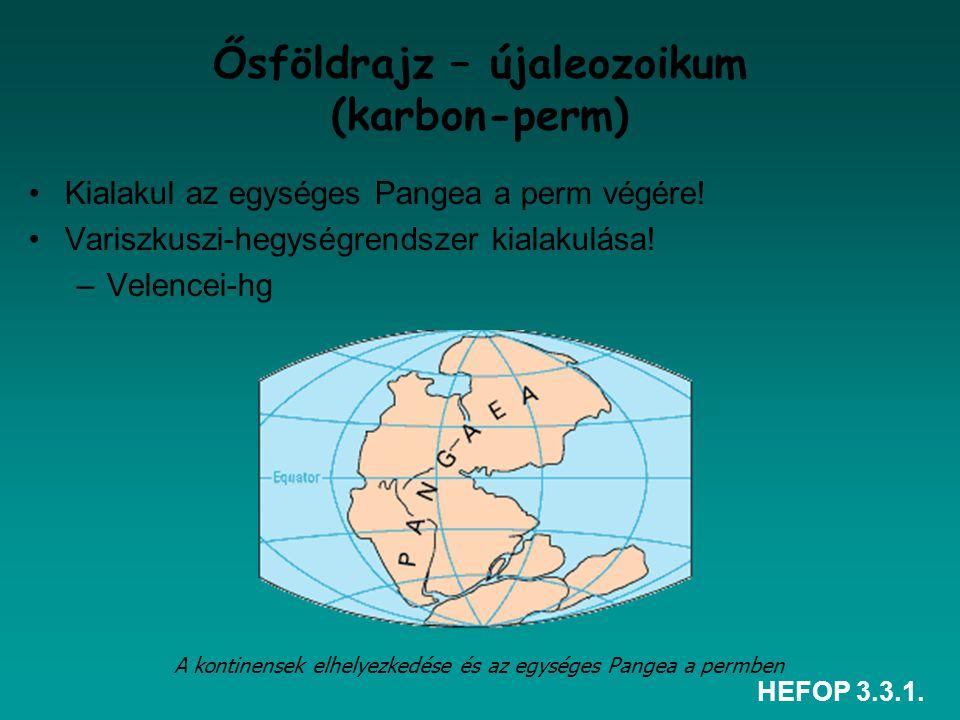 HEFOP 3.3.1. Ősföldrajz – újaleozoikum (karbon-perm) Kialakul az egységes Pangea a perm végére! Variszkuszi-hegységrendszer kialakulása! –Velencei-hg