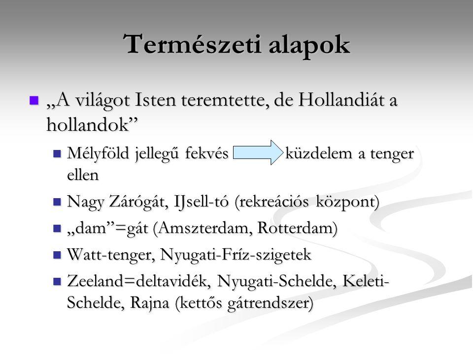 """Természeti alapok """"A világot Isten teremtette, de Hollandiát a hollandok"""" """"A világot Isten teremtette, de Hollandiát a hollandok"""" Mélyföld jellegű fek"""
