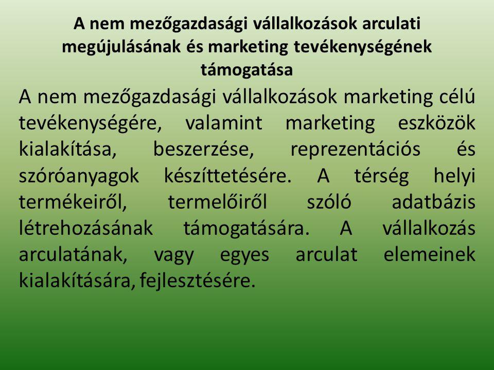 A nem mezőgazdasági vállalkozások arculati megújulásának és marketing tevékenységének támogatása A nem mezőgazdasági vállalkozások marketing célú tevékenységére, valamint marketing eszközök kialakítása, beszerzése, reprezentációs és szóróanyagok készíttetésére.