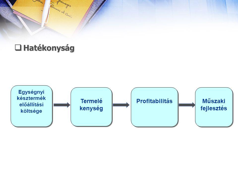  Hatékonyság Egységnyi késztermék előállítási költsége Termelé kenység Termelé kenység Műszaki fejlesztés Profitabilitás