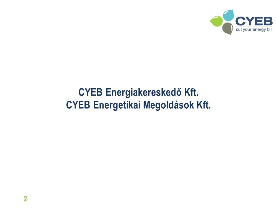 Villamosenergia költségek csökkentése, gyors megtérülésű projektekkel a nyomdaiparban Szebeni Márton ügyvezető, CYEB csoport