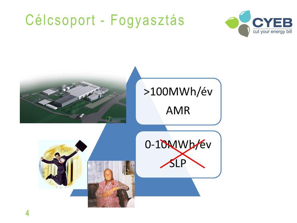 Célcsoport - Fogyasztás 4 >100MWh/év AMR 0-10MWh/év SLP