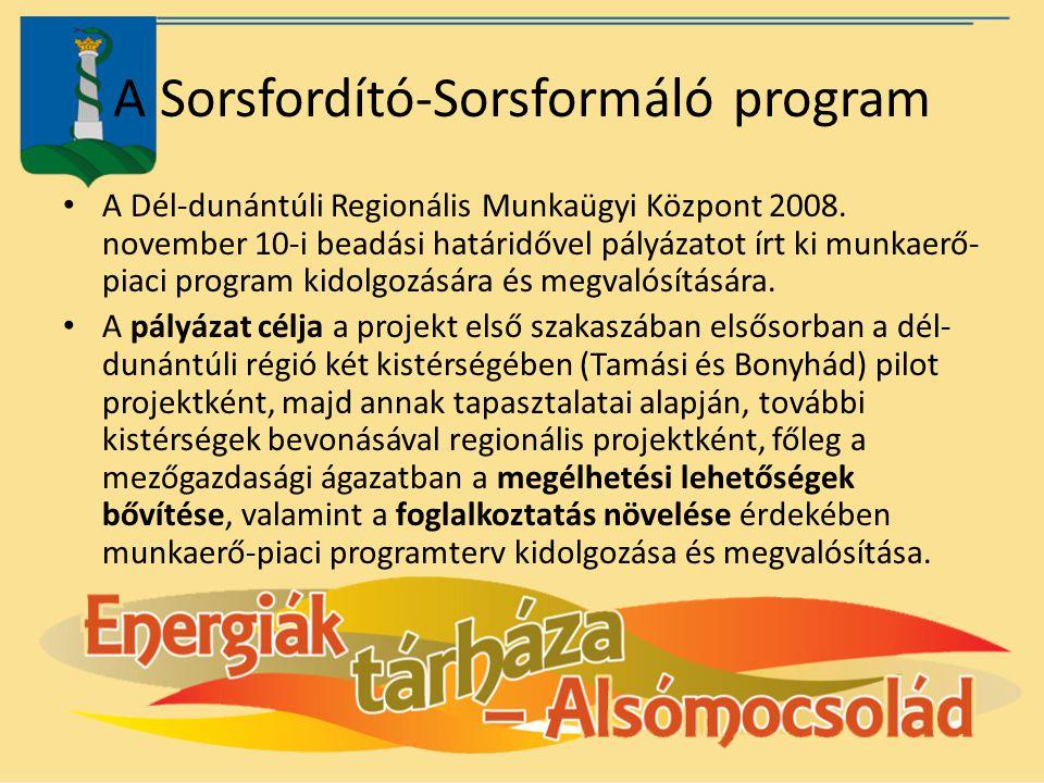 A Sorsfordító-Sorsformáló program A Dél-dunántúli Regionális Munkaügyi Központ 2008. november 10-i beadási határidővel pályázatot írt ki munkaerő- pia