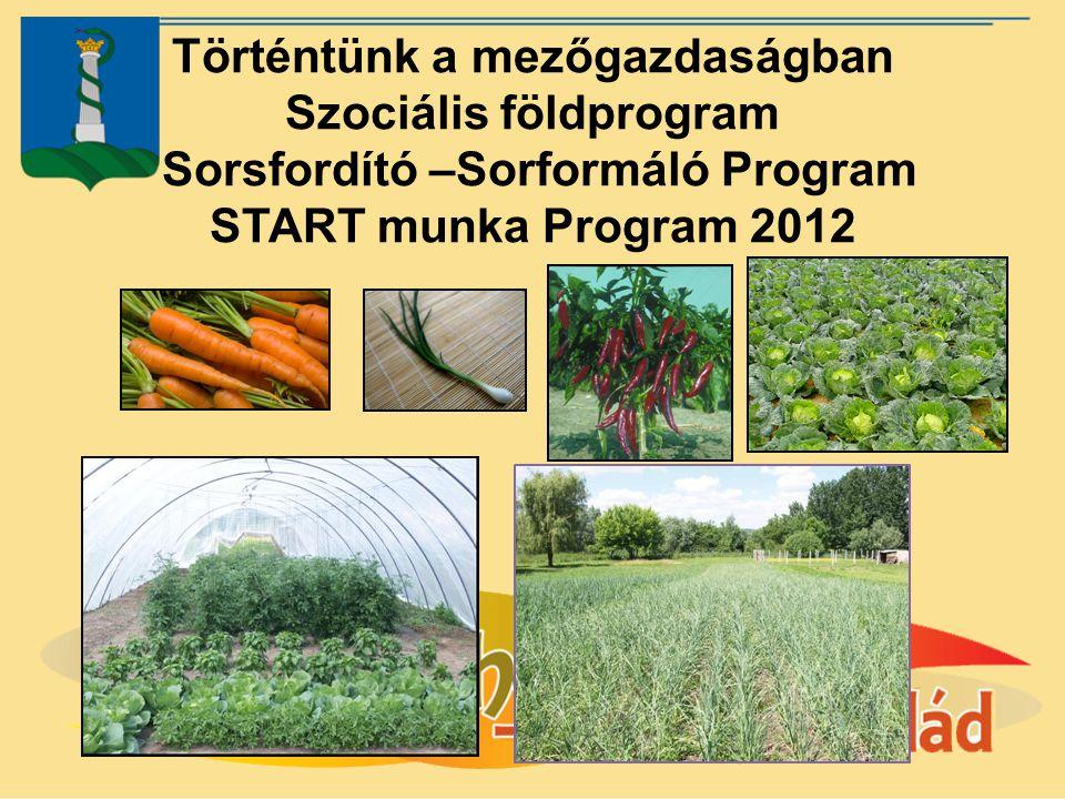 Történtünk a mezőgazdaságban Szociális földprogram Sorsfordító –Sorformáló Program START munka Program 2012