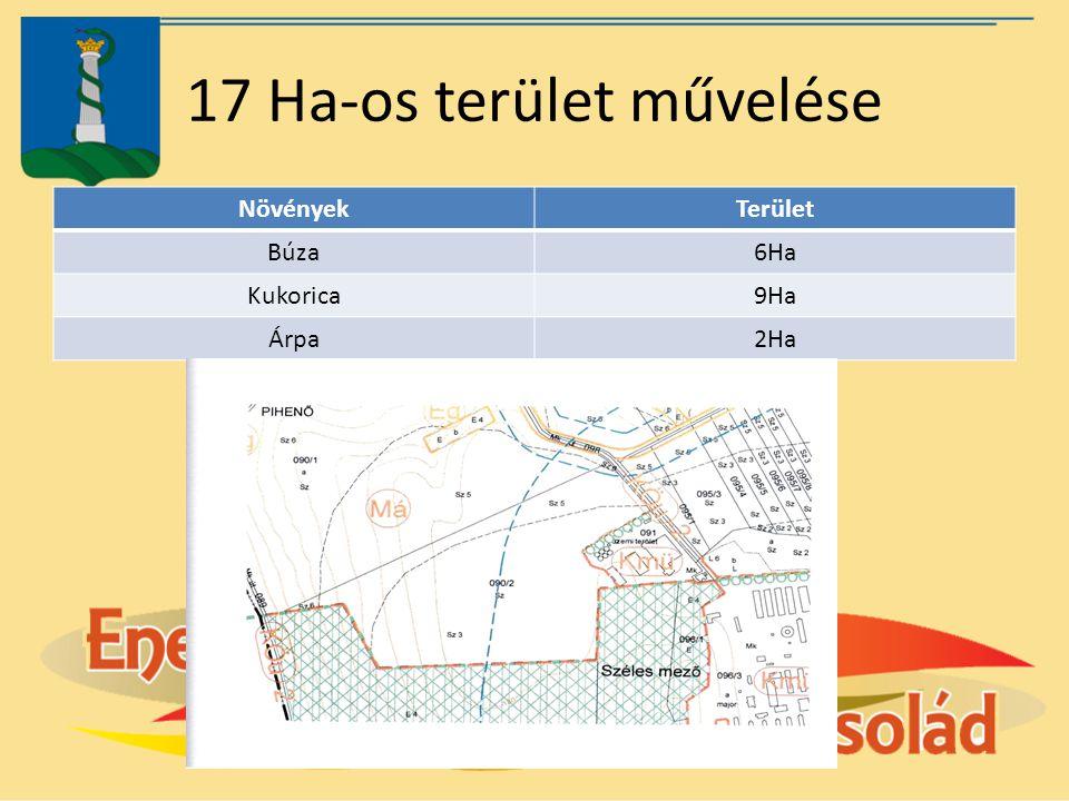 17 Ha-os terület művelése NövényekTerület Búza6Ha Kukorica9Ha Árpa2Ha