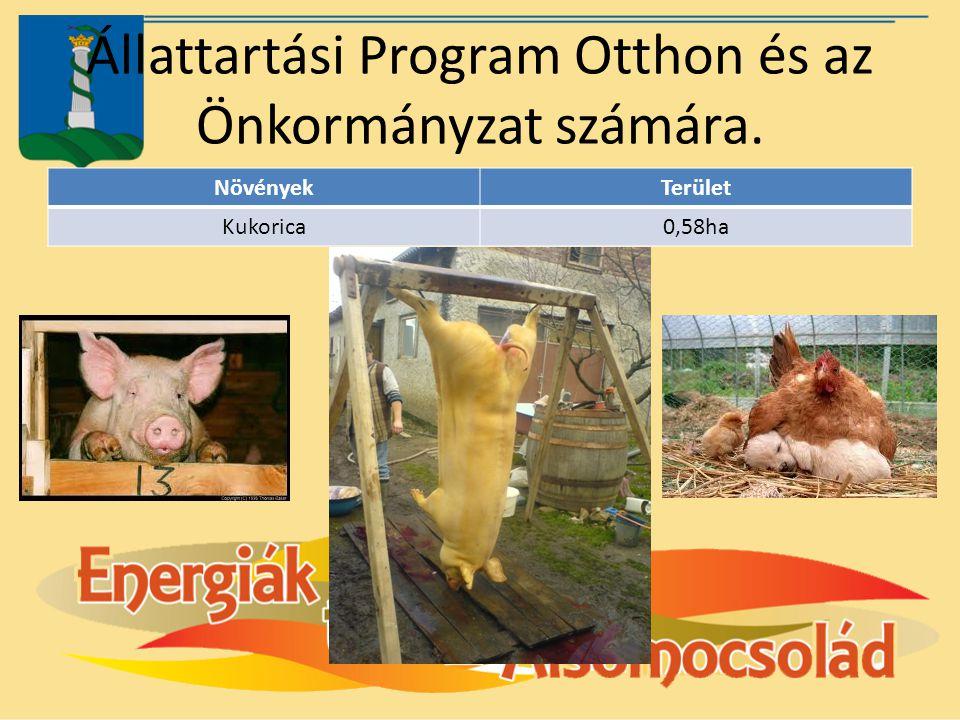 Állattartási Program Otthon és az Önkormányzat számára. NövényekTerület Kukorica0,58ha
