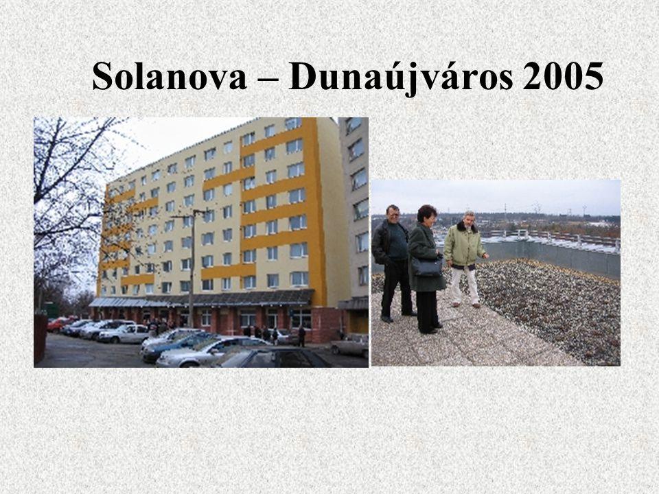 Solanova – Dunaújváros 2005