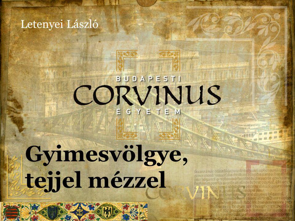 Vázlat Letenyei, László  I.Helyzetfeltárás  II.