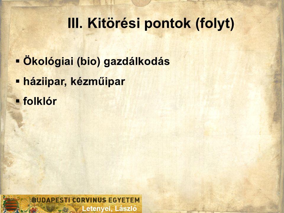 III. Kitörési pontok (folyt) Letenyei, László  Ökológiai (bio) gazdálkodás  háziipar, kézműipar  folklór