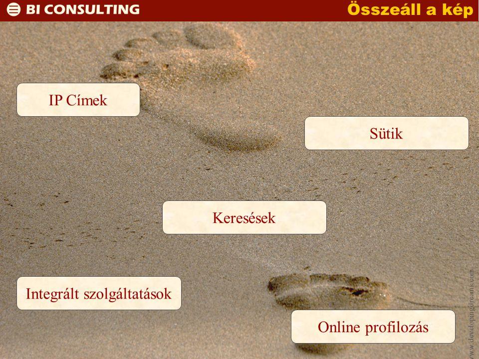 www.developingdreams.com Összeáll a kép Integrált szolgáltatások Keresések Sütik IP Címek Online profilozás
