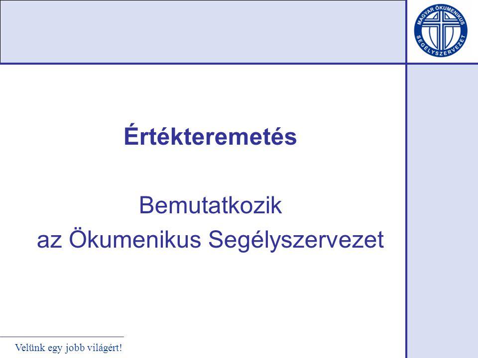Magyarországi szociális-fejlesztő tevékenység