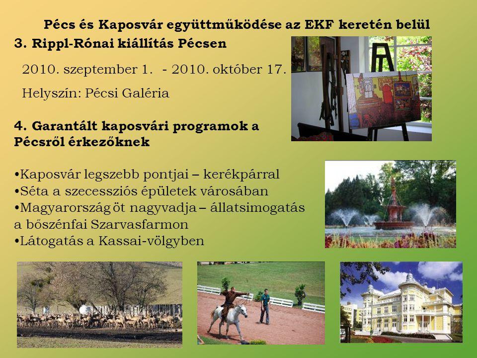 Pécs és Kaposvár együttműködése az EKF keretén belül 3.