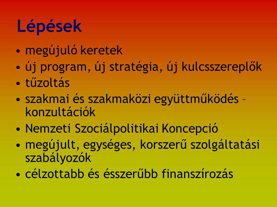 Lépések megújuló keretek új program, új stratégia, új kulcsszereplők tűzoltás szakmai és szakmaközi együttműködés – konzultációk Nemzeti Szociálpolitikai Koncepció megújult, egységes, korszerű szolgáltatási szabályozók célzottabb és ésszerűbb finanszírozás