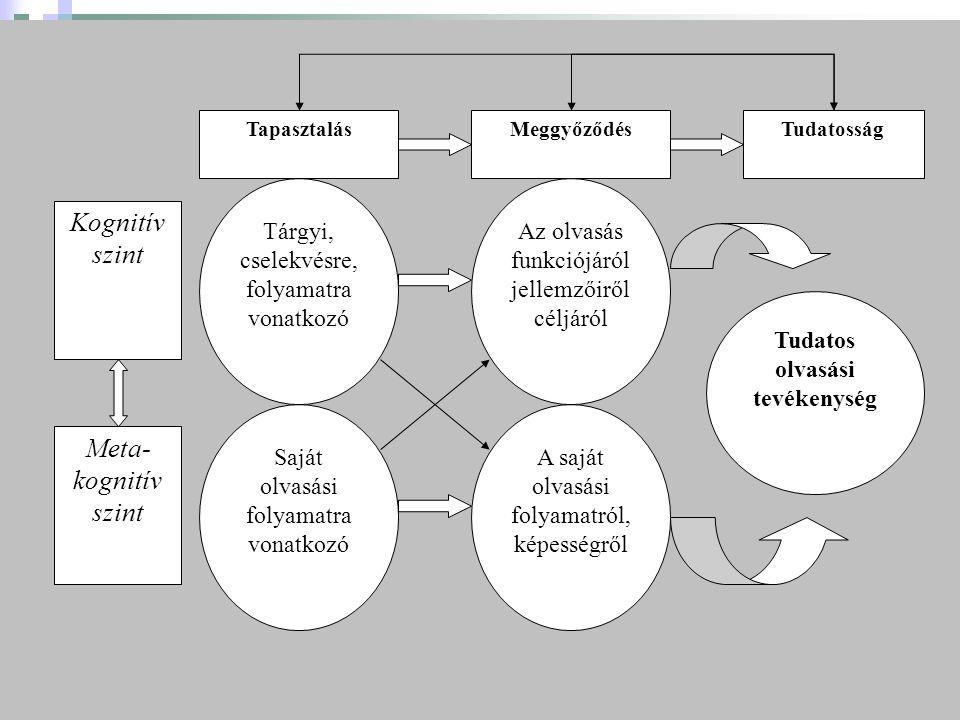 MeggyőződésTudatosság Tudatos olvasási tevékenység Saját olvasási folyamatra vonatkozó Tárgyi, cselekvésre, folyamatra vonatkozó A saját olvasási folyamatról, képességről Az olvasás funkciójáról jellemzőiről céljáról Tapasztalás Kognitív szint Meta- kognitív szint