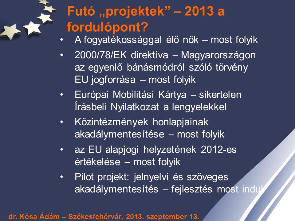 """Futó """"projektek"""" – 2013 a fordulópont? A fogyatékossággal élő nők – most folyik 2000/78/EK direktíva – Magyarországon az egyenlő bánásmódról szóló tör"""