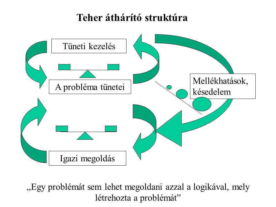 """A probléma tünetei Tüneti kezelés Igazi megoldás Mellékhatások, késedelem Teher áthárító struktúra """"Egy problémát sem lehet megoldani azzal a logikával, mely létrehozta a problémát"""