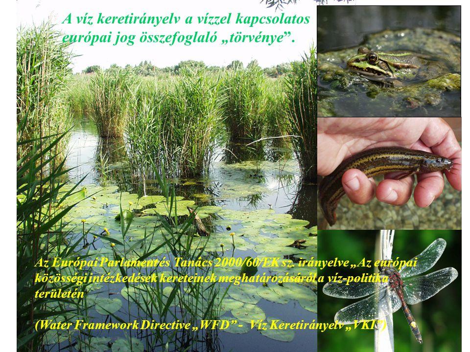 """11 Az Európai Parlament és Tanács 2000/60/EK sz. irányelve """"Az európai közösségi intézkedések kereteinek meghatározásáról a víz-politika területén (Wa"""