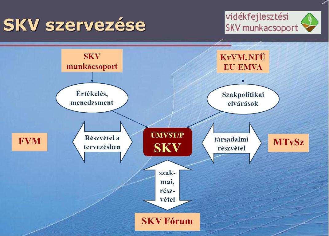 SKV szervezése FVM UMVST/P SKV Értékelés, menedzsment SKV munkacsoport Részvétel a tervezésben KvVM, NFÜ EU-EMVA Szakpolitikai elvárások SKV Fórum szak- mai, rész- vétel társadalmi részvétel MTvSz