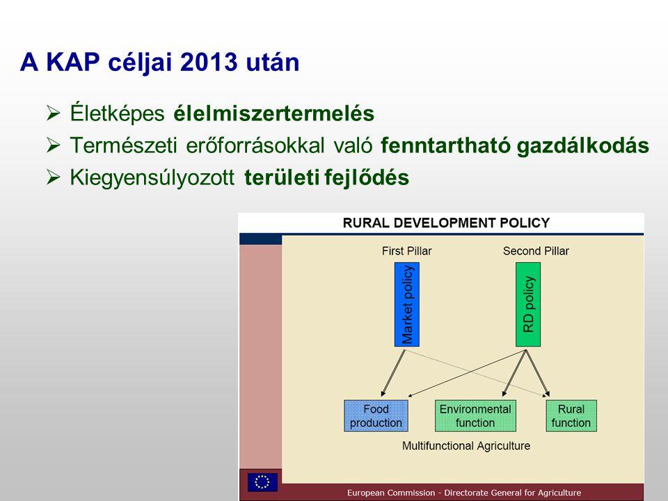  Életképes élelmiszertermelés  Természeti erőforrásokkal való fenntartható gazdálkodás  Kiegyensúlyozott területi fejlődés A KAP céljai 2013 után