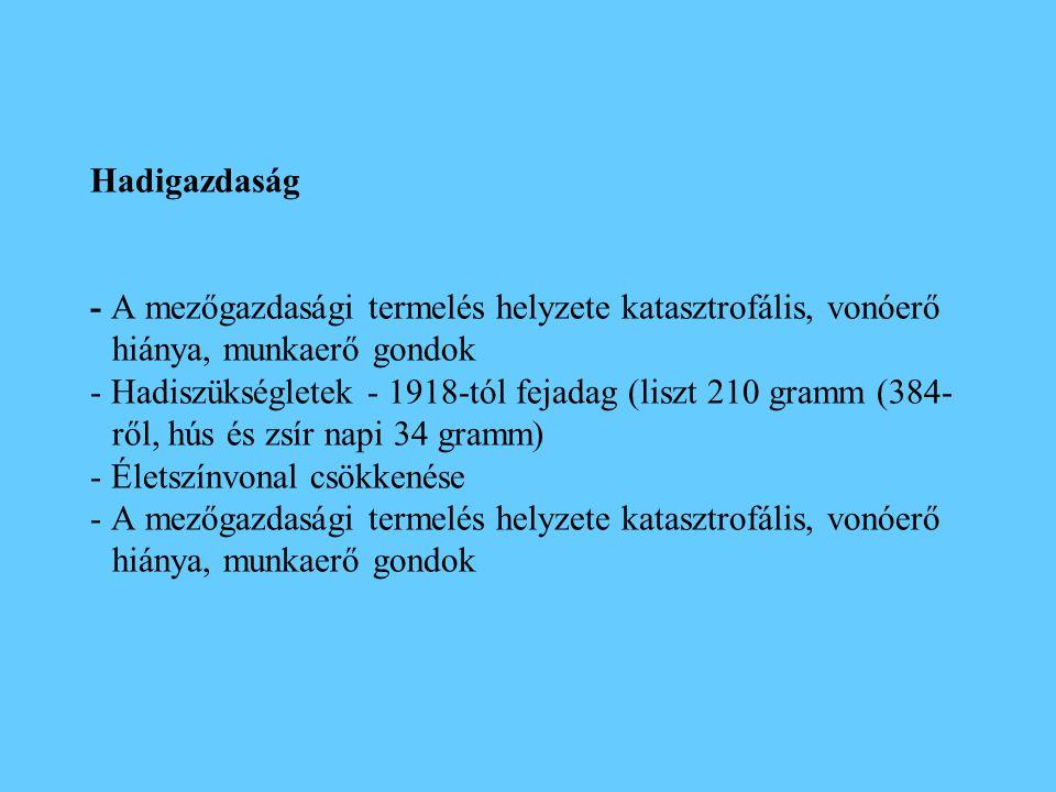 Hadigazdaság - A mezőgazdasági termelés helyzete katasztrofális, vonóerő hiánya, munkaerő gondok - Hadiszükségletek - 1918-tól fejadag (liszt 210 gram