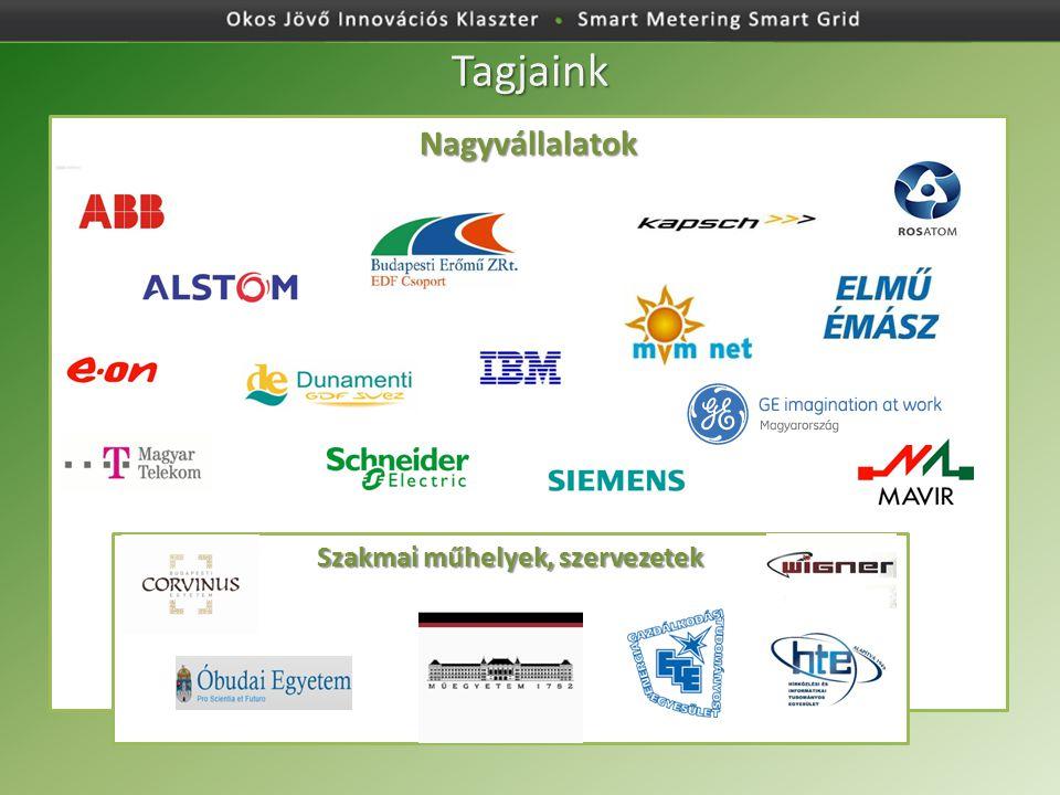 Okos Jövő Innovációs Klaszter Tagjaink Nagyvállalatok Szakmai műhelyek, szervezetek