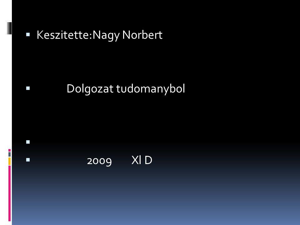 Keszitette:Nagy Norbert  Dolgozat tudomanybol   2009 Xl D
