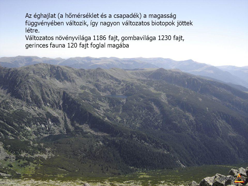 Az éghajlat (a hőmérséklet és a csapadék) a magasság függvényében változik, így nagyon változatos biotopok jöttek létre. Változatos növényvilága 1186