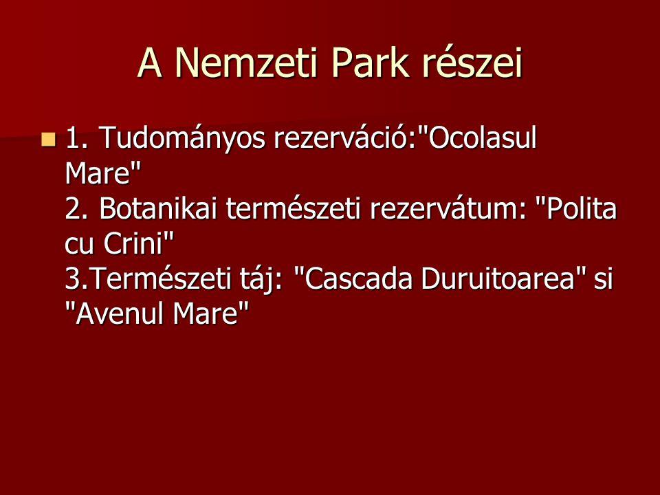 A Nemzeti Park részei 1.Tudományos rezerváció: Ocolasul Mare 2.