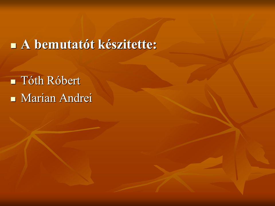 A bemutatót készitette: A bemutatót készitette: Tóth Róbert Tóth Róbert Marian Andrei Marian Andrei