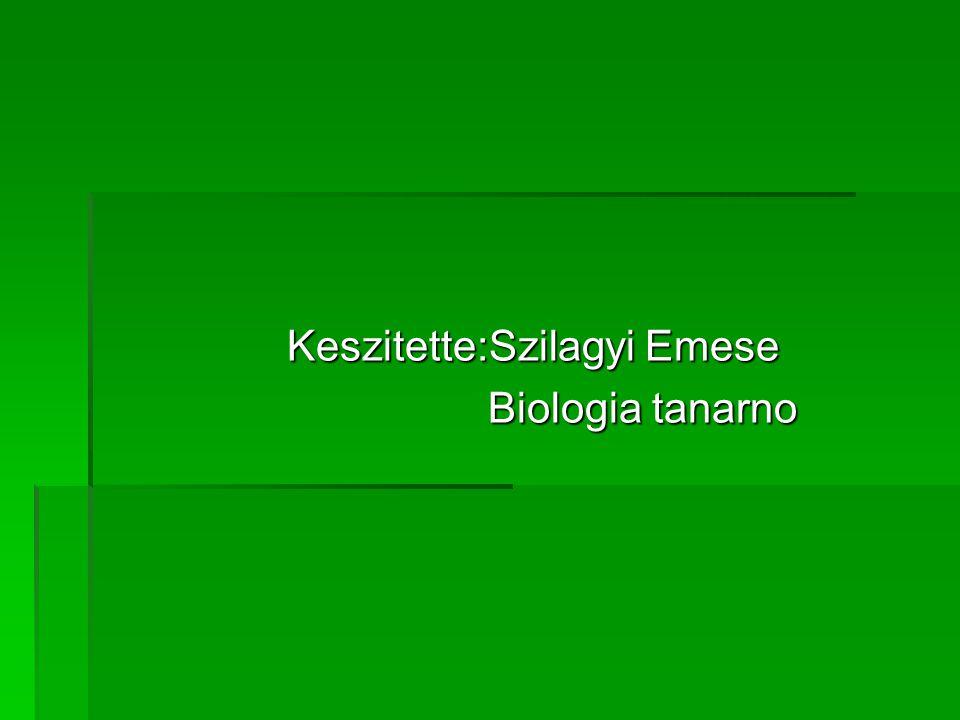 Keszitette:Szilagyi Emese Keszitette:Szilagyi Emese Biologia tanarno Biologia tanarno