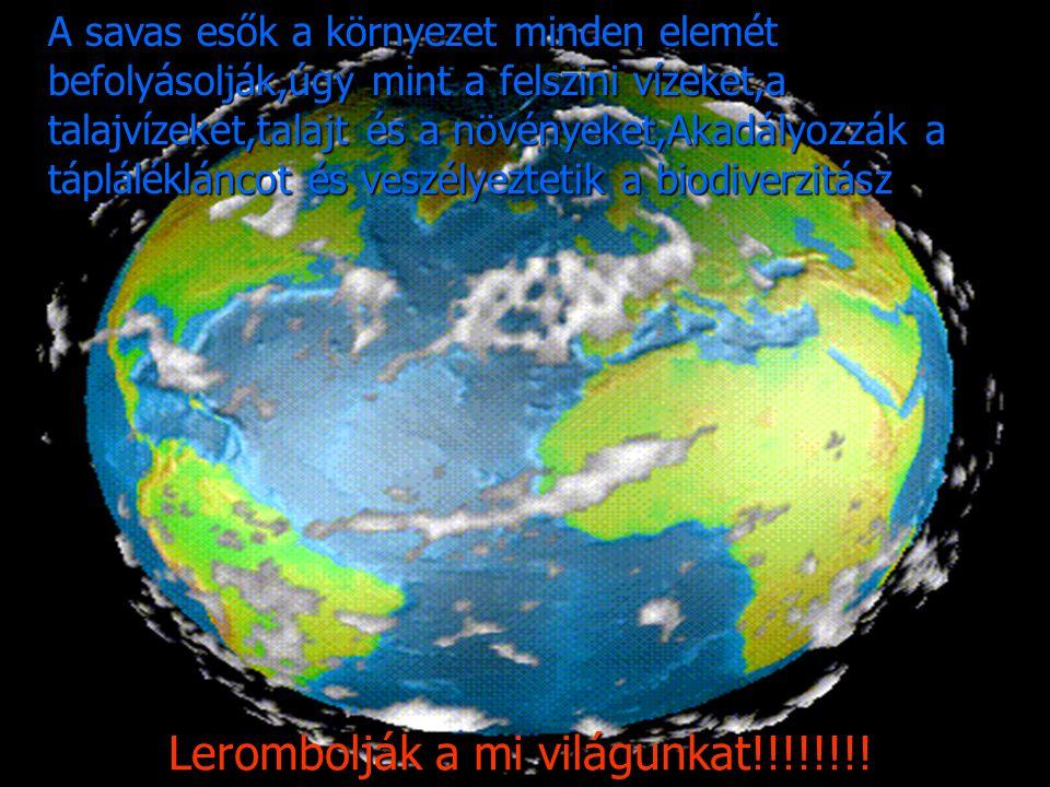 Lerombolják a mi világunkat!!!!!!!! A savas esők a környezet minden elemét befolyásolják,úgy mint a felszini vízeket,a talajvízeket,talajt és a növény